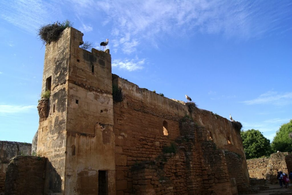 Morocco by Campervan - Rabat8