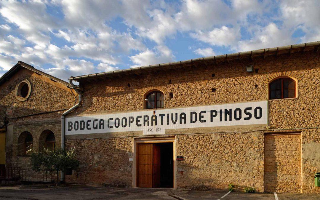Bodegas Pinoso   A Great Wine Tour in Pinoso