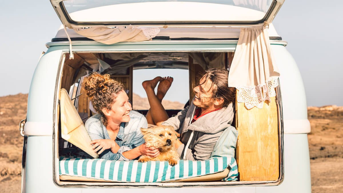 The Coolest Vanlife Pets Travelling In a Campervan